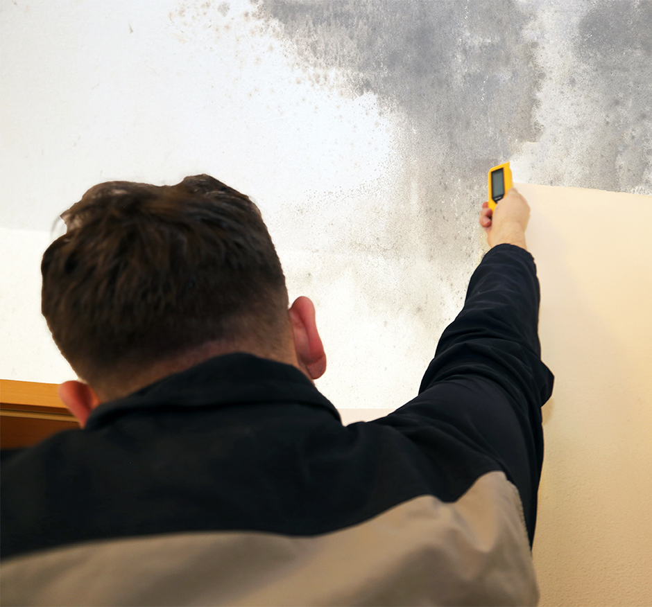Mold Remediation, Removal & Testing: Howell, MI | AMC Environmental - AdobeStock_254730858