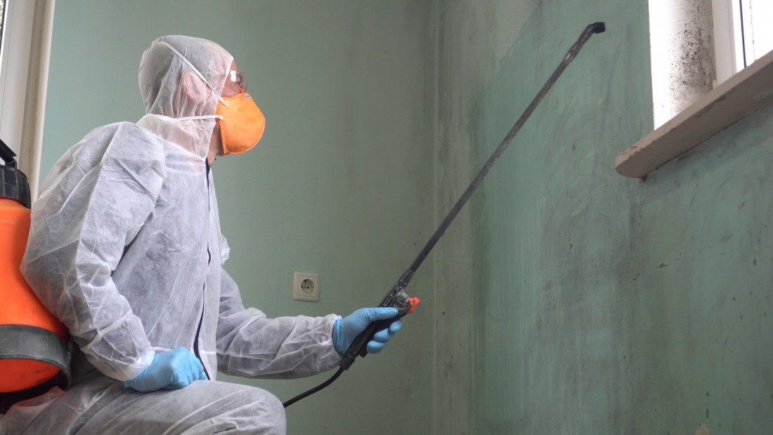 Mold Remediation, Removal & Testing: Howell, MI | AMC Environmental - Mold_Remediation